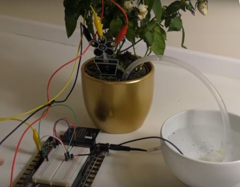 Micro:bit Automatic Watering System